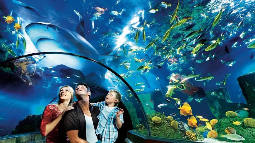 legoland aquario familia