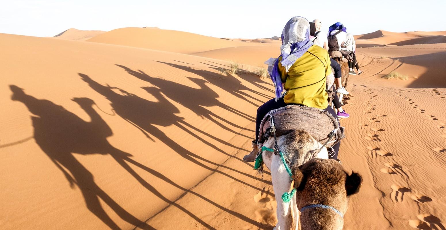 marruecos sahara desierto dromedarios