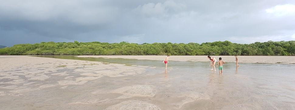 Anabel D. Verano 2017 en Costa Rica Buscando conchas en los manglares
