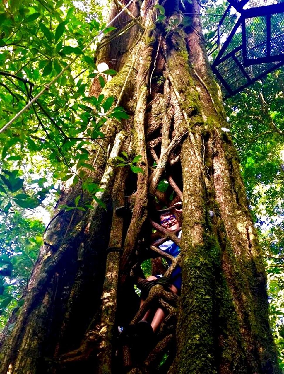María G Costa Rica Pura Vida