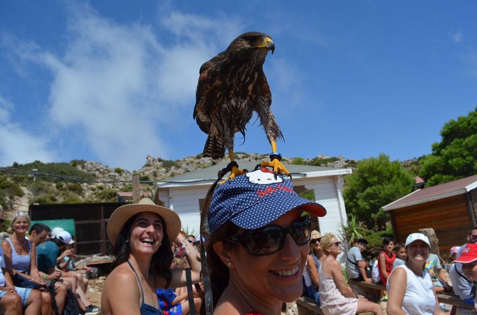 María H. Costa del Sol VIP Verano 2018 Algo voló sobre el Monte de Calamorro