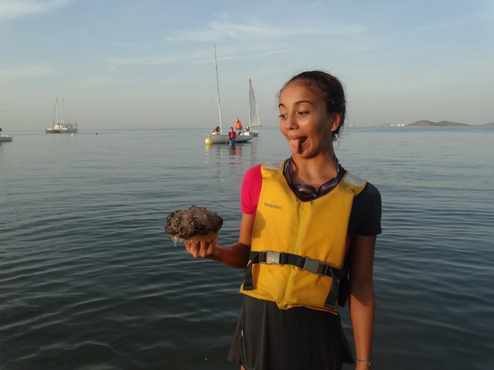 Pedro S El verano es Azul Las medusas no son siempre malignas