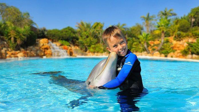experiencia delfines algarve