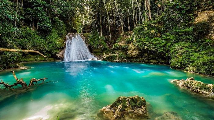 cascadas YS jamaica