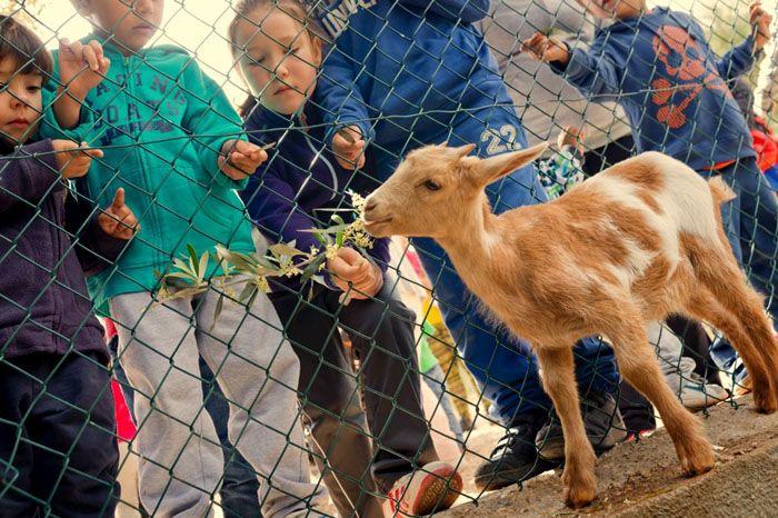 vacaciones para niños semana santa 2015 vilars rural