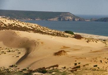 cedernya beachs