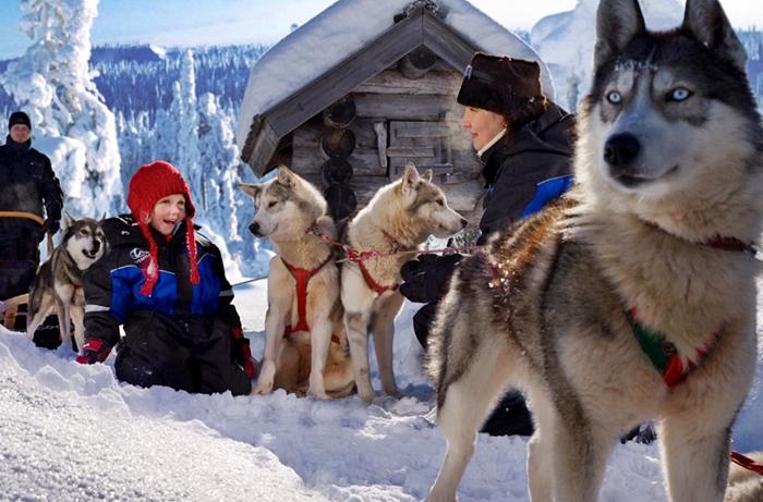 viajar a laponia arctic circle reyes 2017